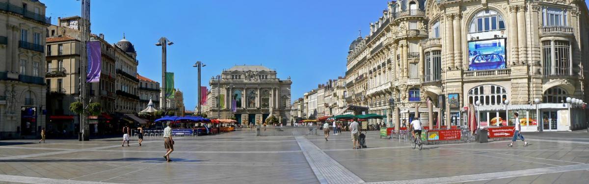 Visitez Montpellier avec votre professeur
