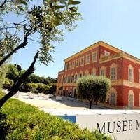 Visit Museum Matisse
