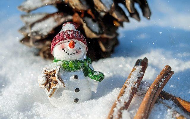 Apprenez le Français avec ce conte de Noël : Le père Noël n'est pas en retard de Roland Lecoint