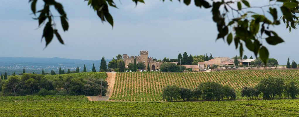 Château La Nerthe – an emblematic visit with Celtina