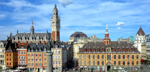 French Immersion in Lille