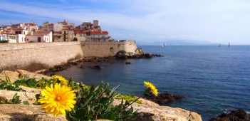 Français en Immersion à Antibes