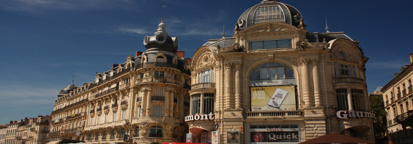 Cultural Immersion Home Stay in Montpellier